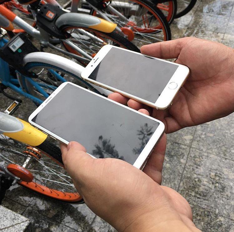 Фотографии лотков с дисплеями iPhone 8 вызвали панику у пользователей: это не тот смартфон, которого все ждали