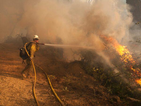 Apple пожертвует 1 миллион долларов на ликвидацию последствий пожаров в Северной Калифорнии