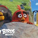 Известна дата выхода нового фильма по мотивам Angry Birds