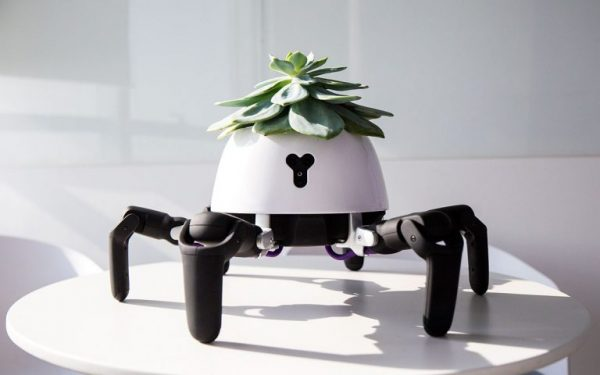 Компания Vincross выпустила робота-садовника
