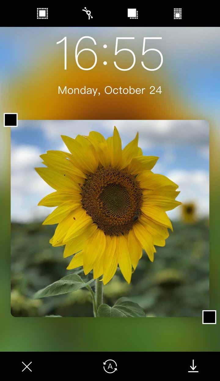 Бесплатные и качественные приложения с заставками для iPhone